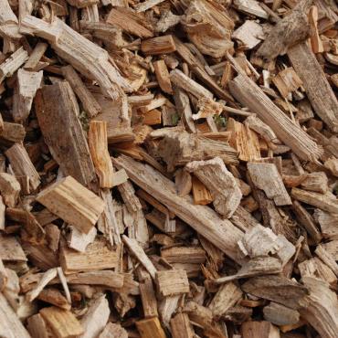 Carbon-Terra-DTS-Biomasse-021-370-370